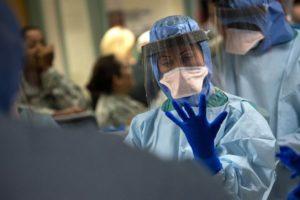 Studies Roll as New Ebola species Found