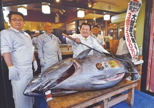Bluefin tuna sells for record $3M at Tokyo auction